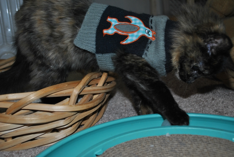 Charlotte in her sweater reaching out to touch the ball